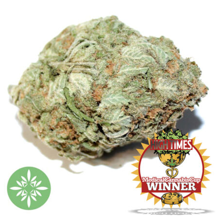 Pineapple Express (AAAA) High Times Medical Cannabis Cup Winner 🏆